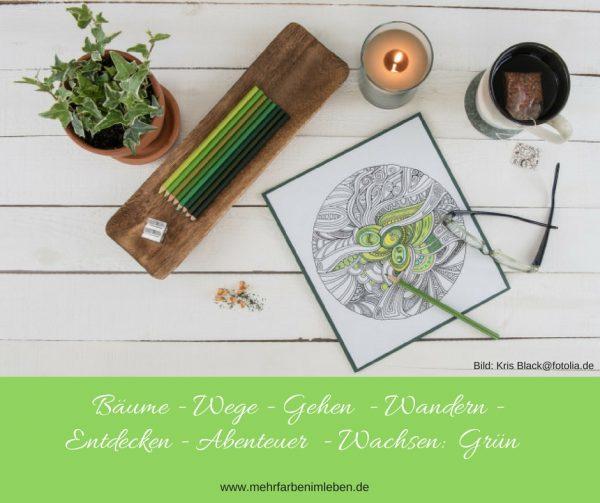 Malbücher für Erwachsene – die Farbenlehre – Mehr Farben im Leben